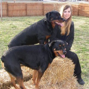 My Rottweilers and I