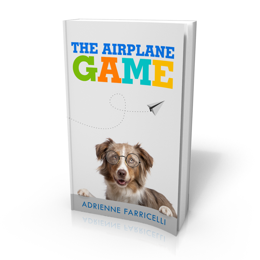 The Airplane Game 3D Cover